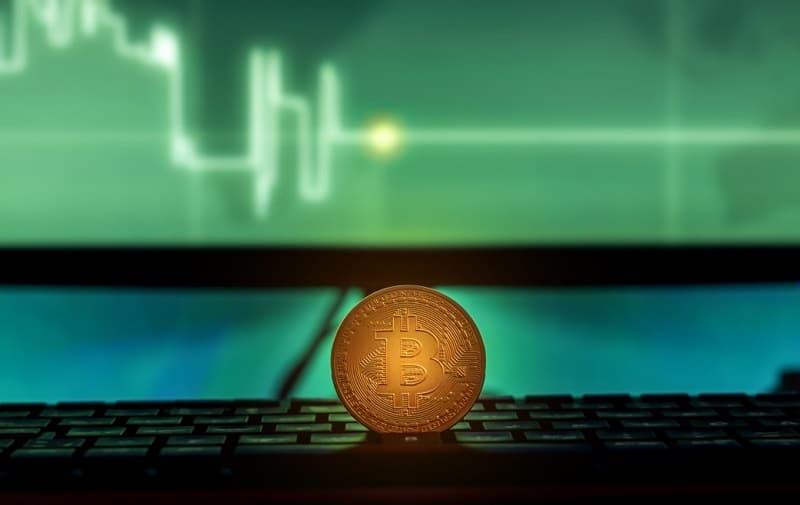 bitcoin o cardano