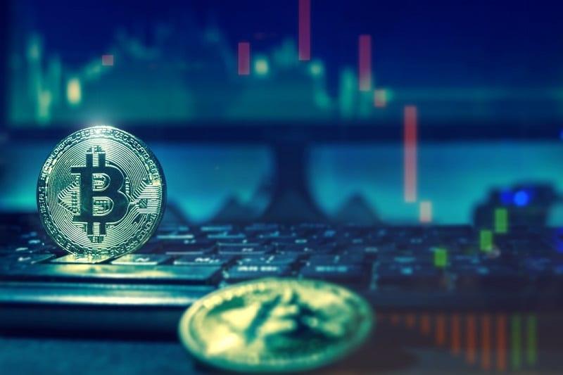 cardano o bitcoin