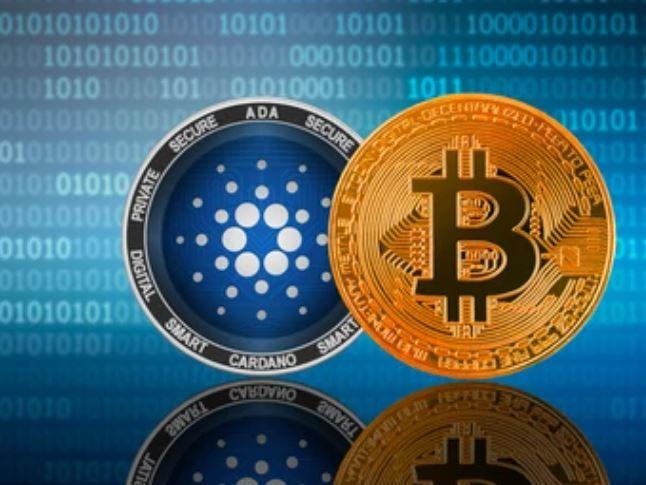 opiniones cardano vs bitcoin